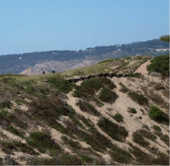 oitavos-dunes-dunes