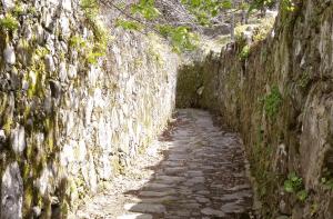 stone-path-on-the-camino-de-santiago-de-compostela